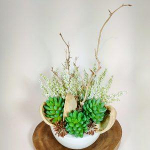 Bouquet plante grasse4