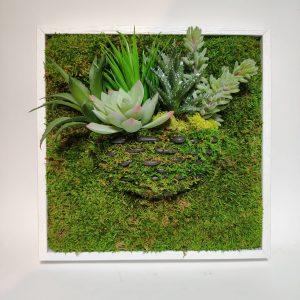 Cadre vegetal plante grasse 2