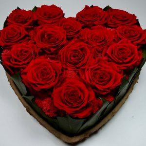 Rose stabilisees coeur, vegetaltrend