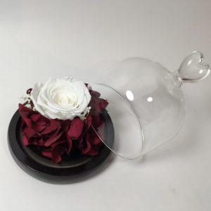 Rose stabilisée rose blanche, vegetaltrend