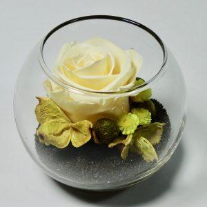 Rose stabilisée jaune, vegetaltrend